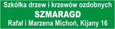 Szkółka drzew i krzewów - Michoń
